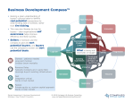 Business Development Compass