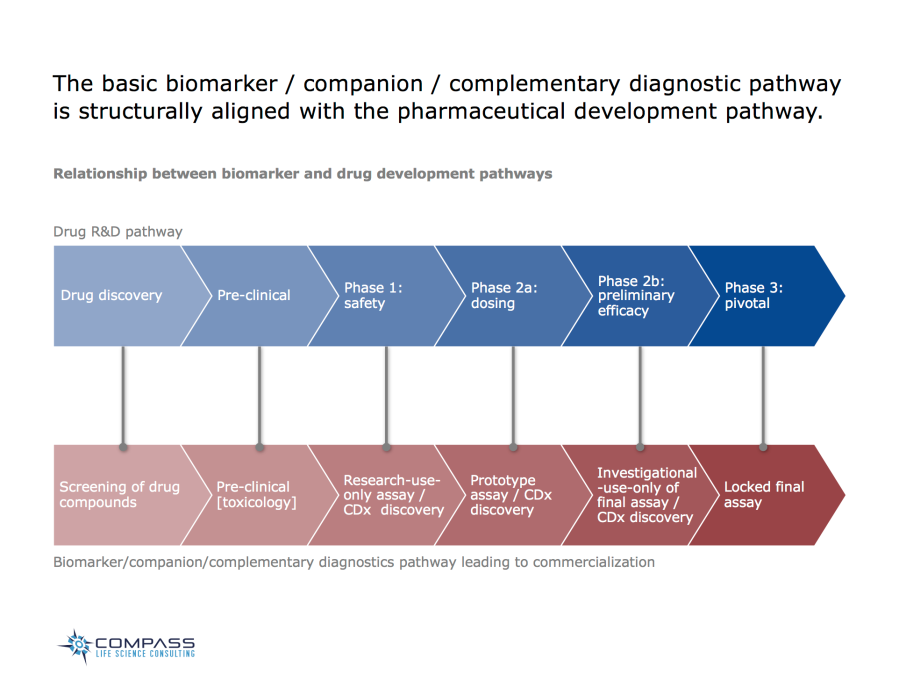 The basic biomarker / companion / complementary diagnostic pathway is structurally aligned with the pharmaceutical development pathway.